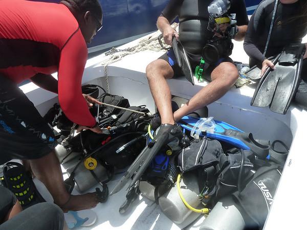 Diving June 12, 2010